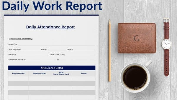 Daily Project Status Report